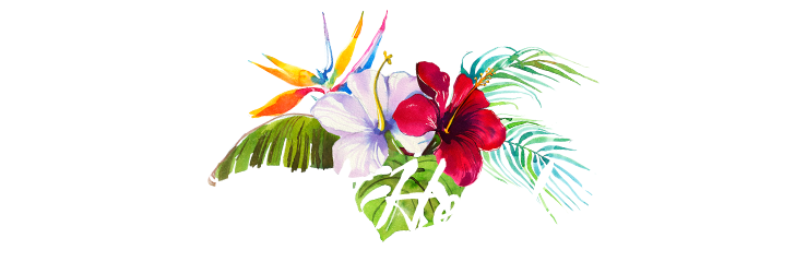 Parrot Head Merch Header with Tropical Flowers